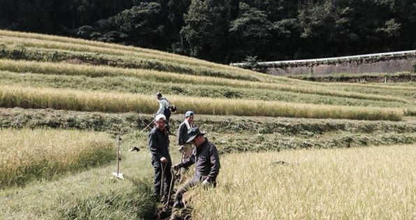こぎあげ作業! 今日は田んぼの「じるい」場所に溝をこしらえました。 稲刈りは9月中旬です!